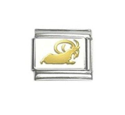 9mm Classic Size Italian Charm Zodiac - Capricorn