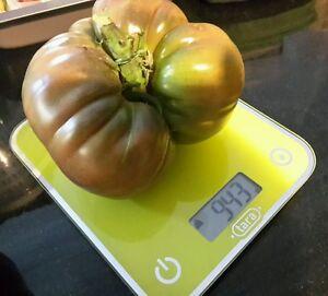 25 Graines de Tomate Noire de Crimée Méthode BIO seeds légumes ancien potager