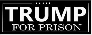 034-TRUMP-FOR-PRISON-034-BUMPER-STICKER-DECAL-2020-ANTI-TRUMP-bernie-biden-warren-harr