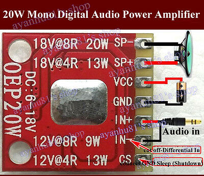 DC 6V-18V Mini 20W Mono Class D Audio Power Amplifier Board Differential Input