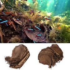 50pcs Natural Catappa Leaves Almond Leaf Fish Cleaning Treatment Aquarium Tank Q