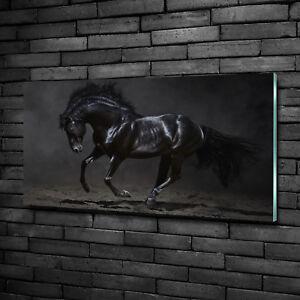 Leinwandbild Kunst-Druck 100x50 Bilder Tiere Pferd