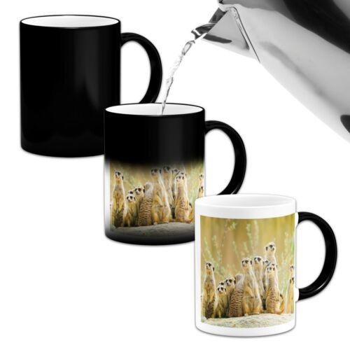 Stunning Meerkats Gathering Novelty Heat Colour Changing Mug