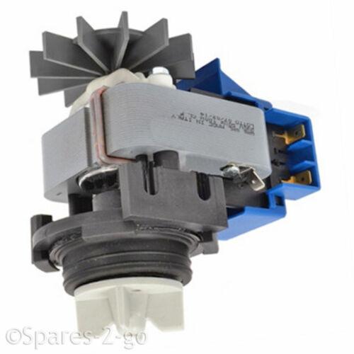 La pompa di scarico Unità di base Motore A POLO ombreggiata per Lavatrici Miele 3568614