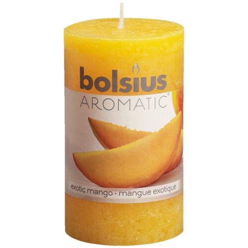 6 Duft Stumpen Kerzen 100x58 mm Rustik Bolsius Aromatic verschiedene Düfte