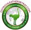 thumbnail 5 - Ostrich Leather Hide, African Violet Color (%100 Genuine Natural skin)