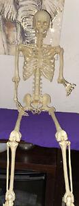 Esqueleto Poseable Tamaño Completo De La Vida Humana Halloween Decoración Fiesta