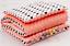 Babydecke-MINKY-2-Tlg-SET-Kuscheldecke-Pluesch-75-x-100-cm-Kissen-KinderDecke Indexbild 9