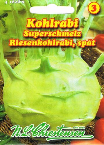 Kohlrabi /'Superschmelz/' weiß Riesenkohlrabi spät Saatgut 418209