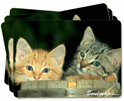 'Soulmates' Kittens in Beer Barrel Picture Placemats in Gift Box, SOUL14P