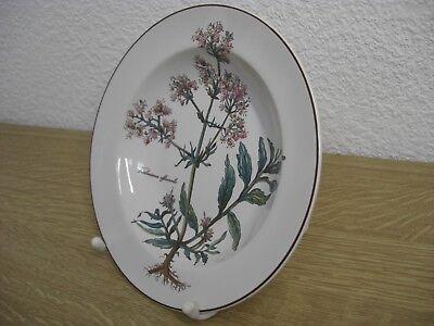 Villeroy und Boch Botanica Suppenteller Teller 22 cm