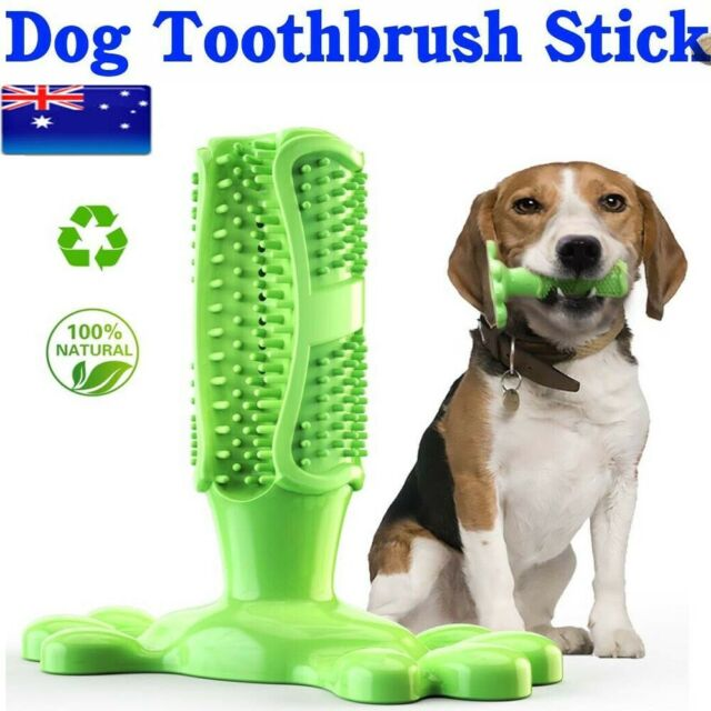 Dog Pet Toys Chews Toothbrush Brushing Stick Puppy Dental Care Chew Teeth Toy