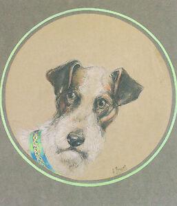 Dessin-Original-H-Brunet-Chien-Fox-terrier