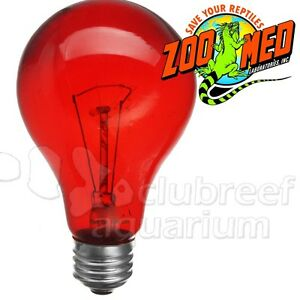 Zoo Med Nightlight Red Reptile Heat Bulb 25w 40w 60w Or