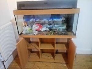Bekannt Juwel Rio 240 Aquarium Cabinet in Beech Filter Tropical Fish Tank WN22