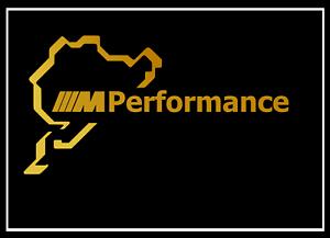 2x BMW M Performance NURBURGRING SCRITTA ORO 100x190mm Adesivo Adesivi