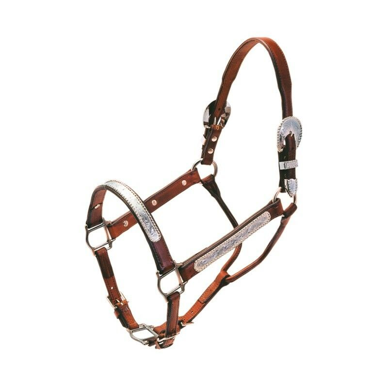Halter show Shutz Bredhers 4694 Dark brown Cheval
