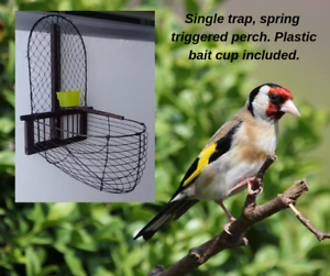 2-hand-made-bird-traps-recapture-escaped-aviary-birds-woodland-projects