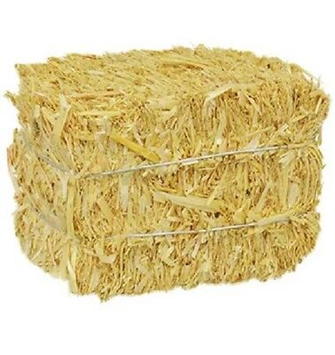 AUTUMN FALL HARVEST STRAW BALE FOR CRAFTS AND OR DECORATIONS 2.5 x 3.5 x 2.5 in.