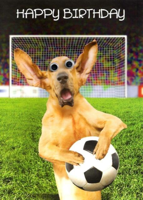 Birthday Card Funny Animal Dog Football Goalie Goggly 3d Moving Eyes