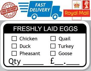 100 x Freshly Laid Egg Box Stickers Hen Chicken Quail Duck Pheasant Turkey Goose