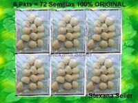 6 Pkts De 12 C/u Nuez De La India - Semilla Adelgazante 100% La Original