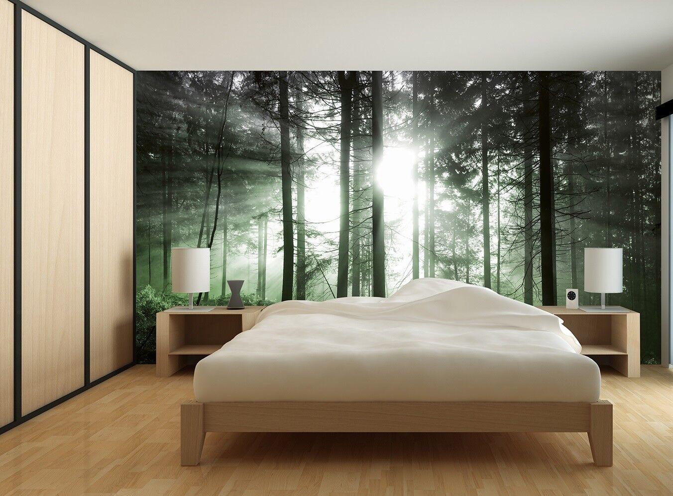 366x254cm Foto Wandtapete Wandgemälde Sonne Strahlen Wald Dekoration grün Kunst