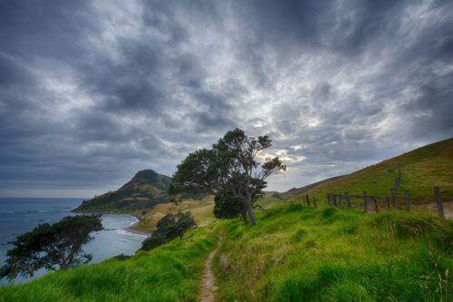 NEW ZEALAND LANDSCAPE POSTER PRINT STYLE C 24x36 HI RES 9MIL PAPER