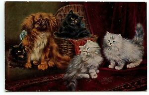 RAPHAEL-TUCK-CHATS-CHATONS-CATS-KITTEN-DOG-CHIEN