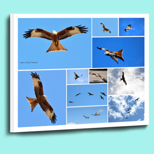Amazing Personalised Photo Collage Canvas Print Box Wrapped Many sizes available