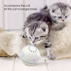 Xiao-mi-Petoneer-Intelligent-Pet-Companion-Built-in-Catnip-Ball-Cats-Toy-Hot