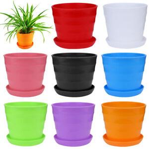 solide mini plastique pot de fleur succulent plante maison bureau d cor neuf ebay. Black Bedroom Furniture Sets. Home Design Ideas