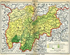 Cartina Stradale Veneto Trentino.Trentino I Boschi Carta Geografica Trento Stampa Antica Passepartout 1915 Ebay