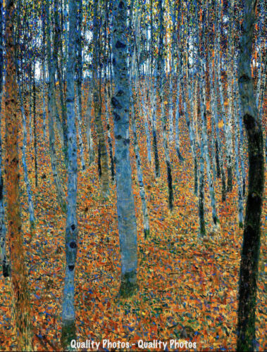 "Beech Grove I 8.5x11/"" Photo Print Gustav Klimt Tree Landscape Painting"