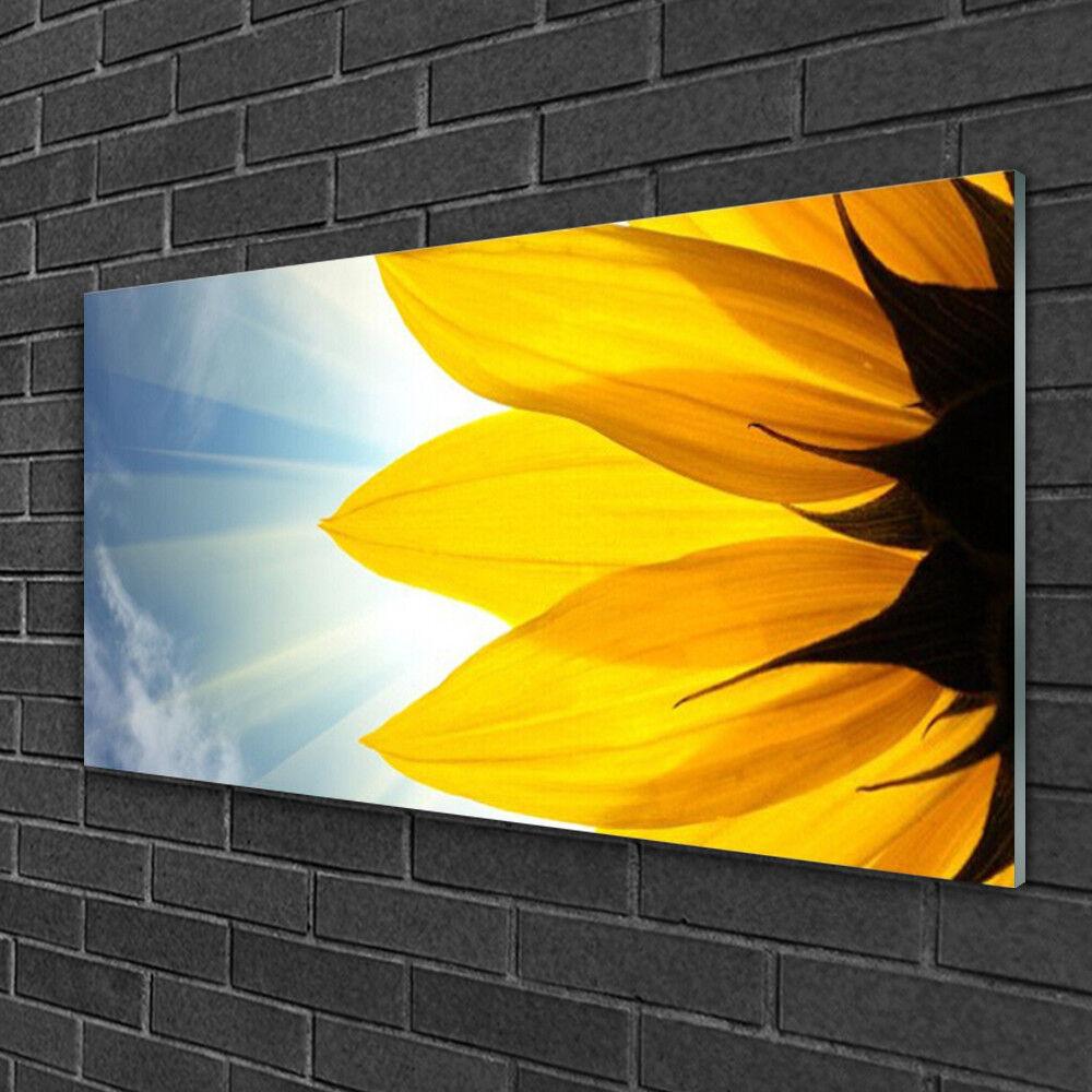 Image sur verre Tableau Impression 100x50 Floral Pétales