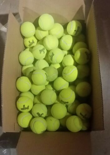 50 used tennis balls