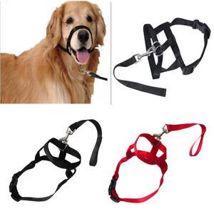 Dog-Mouth-Muzzle-Adjustable-Head-Collar-Walk-Training-Loop-Stop-Pulling-Halter