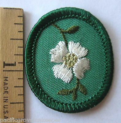 DOGWOOD Girl Scout TROOP CREST Tree Flower 1955 ME Replaced in 1960 Combine Ship