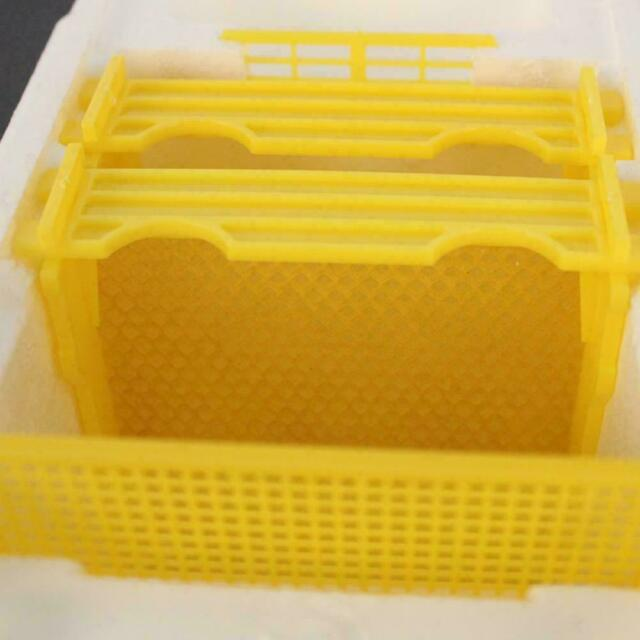 Beekeeping Bee-King-Foa Mating Hive Plastic Box Harvest Beehive Pollination Y6W5