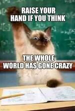 Funny Cat  refrigerator magnet 3 1/2 x 3 1/2
