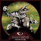 Fran Primat Till Reptil by Anatomi-71 (Vinyl, Dec-2011, Halvfabrikat)