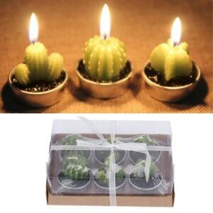 Image Is Loading 6pcs Tealight Candles Long Burning Unscented Succulent Mini