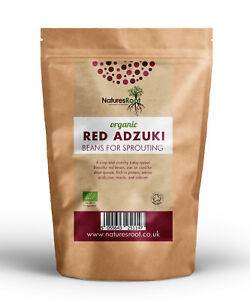 Organic-Red-Adzuki-Beans-Use-in-Cooking-Sprouting-Seeds-Growing-Sprouts