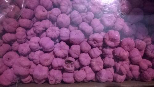 Dried Fruit 100 x Pink Putka Pods for crafts FREE P /& P 1-2cm displays