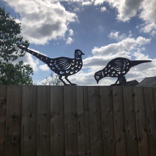 2 Rusty Metal BIRDS PHEASANT Garden sign Ornament decoration lawn feature statue