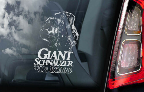 V03 Russian Bear Dog Window Sign Decal Gift Pet GIANT SCHNAUZER Car Sticker