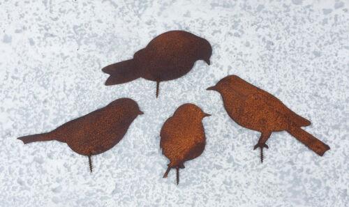 4er Set VÖGEL zum schrauben Edelrost Rost Dekoration Vogel Spatz Ast Gartenzaun