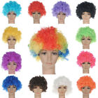 Halloween Disco Clown Curly Afro Circus Fancy Dress Hair Wigs Xmas Party Costume