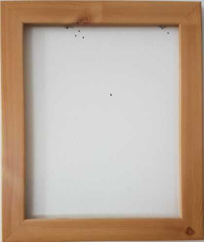 Photo Picture Poster Frames Black Oak Silver