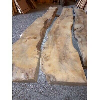 Tavole Noce Nazionale Misura Tronco Mm50x190 250 250x2150 Massello Ebay